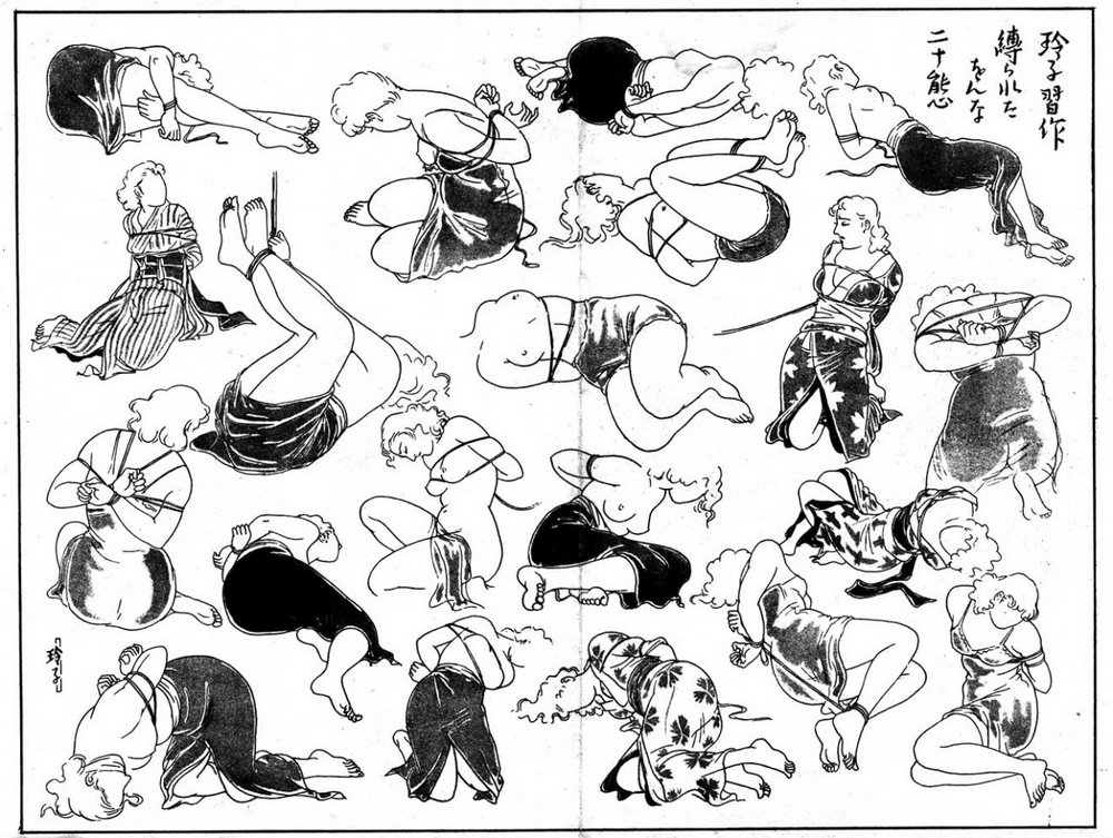 poster of japanese bondage ties and positions