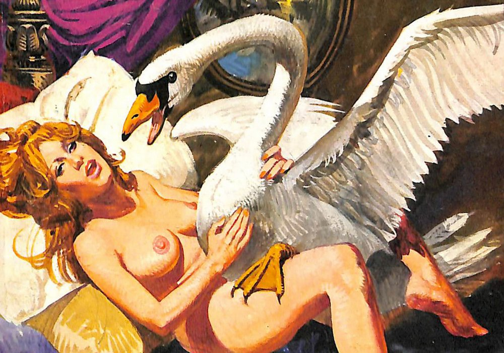 leda and the swan pulp cover version