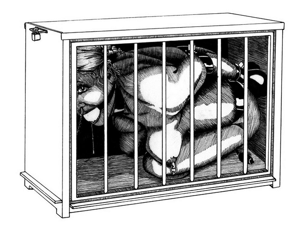 slave-box